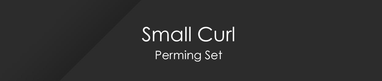 Pro Sets - Juego de permanente para principiantes Small Curl Mini