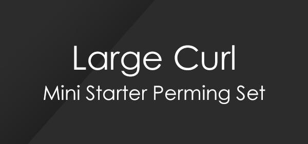 Large Curl Mini Starter Perm Set