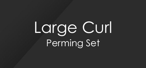 Large Curl Perm Set