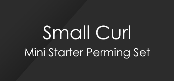 Small Curl Mini Starter Perm Set