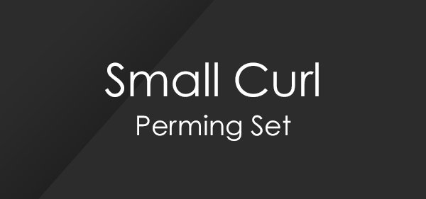 Small Curl Perm Set